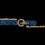 bangenis logo